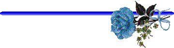 Blue Bar 5