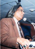 Professor Seher Ansari