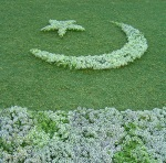Floral Flag of Pakistan